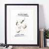 Lámina decorativa ilustrada becho raro axolote ajolote salamandra regalo ilustración arte